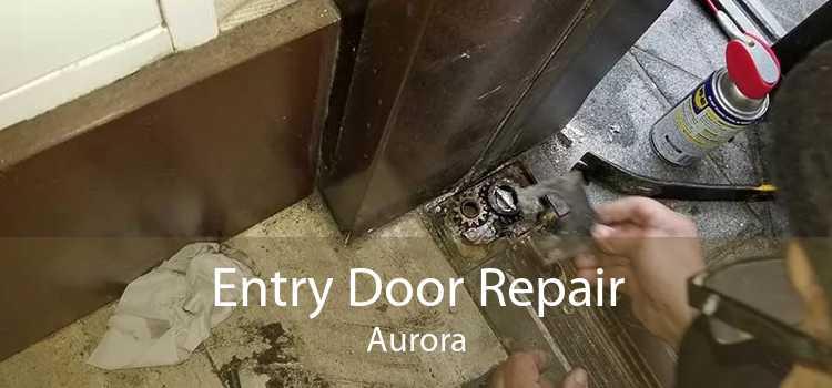 Entry Door Repair Aurora