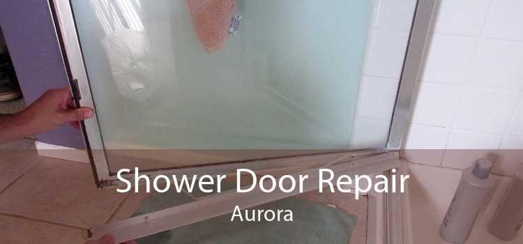 Shower Door Repair Aurora